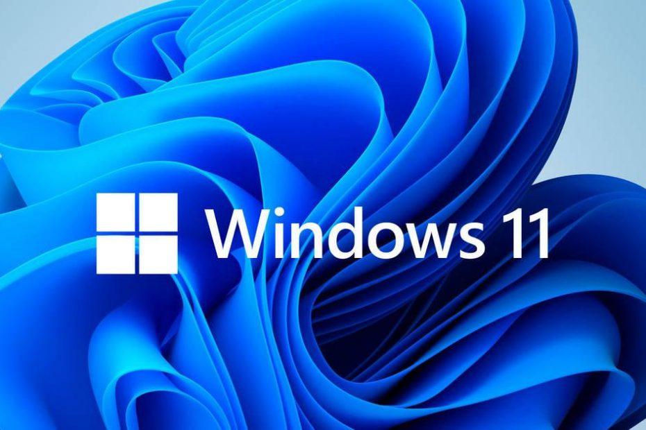 windows 11 Nattia